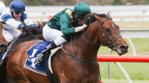 Todd Pannell rides Cerberus to victory in the Hill Smith Stakes at Morphettville. Picture: Atkins Photography