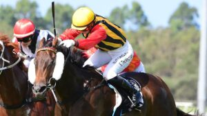 Toowoomba trainer Rex Lipp has big summer goals with Simply Fly. Picture: Trackside Photography