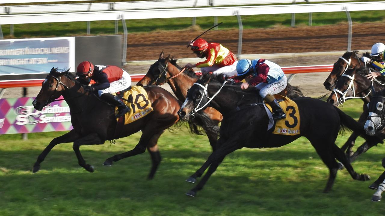 Purrfect Deal winning the Grafton Cup in July. Picture: The Daily Examiner