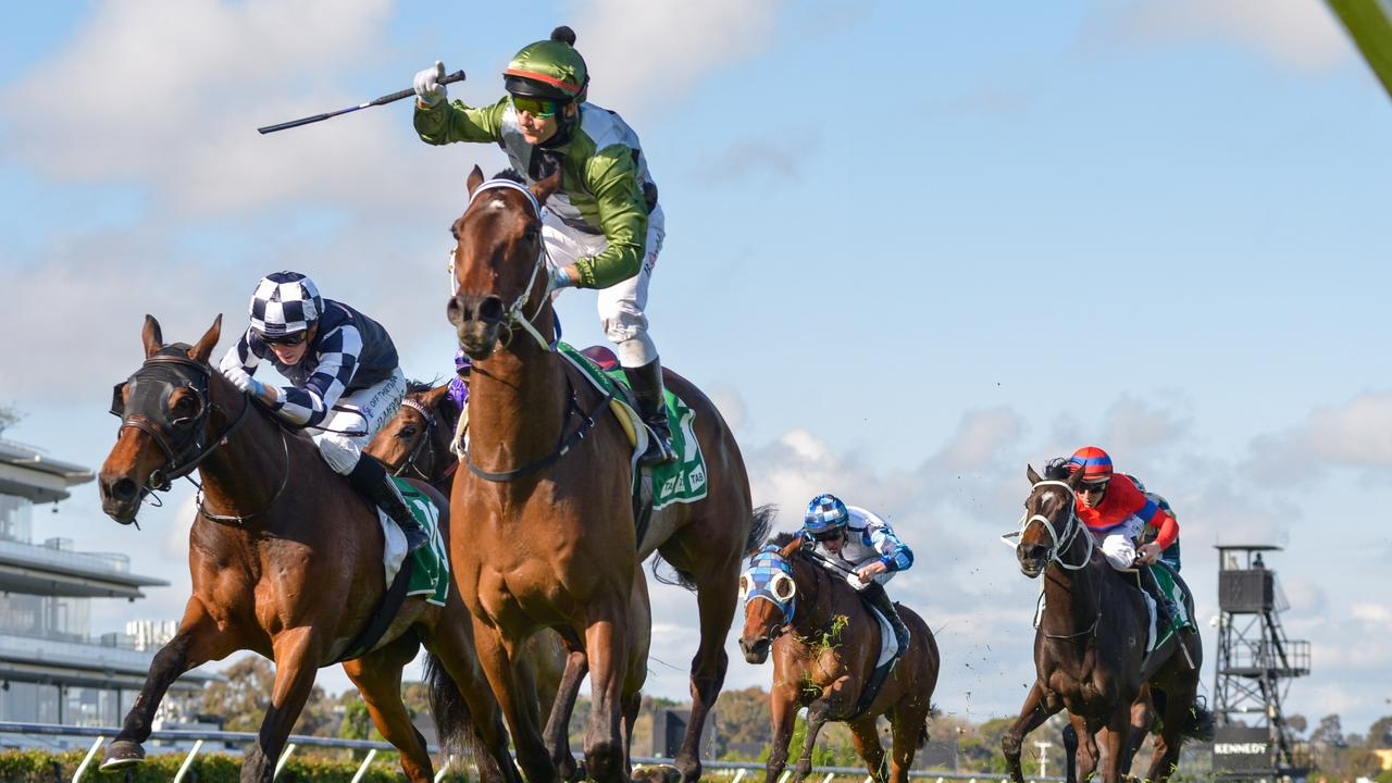 Caulfield Cup favourite Incentivise looks a good thing in Round 3. Picture: Reg Ryan/Racing Photos vie a Getty Images