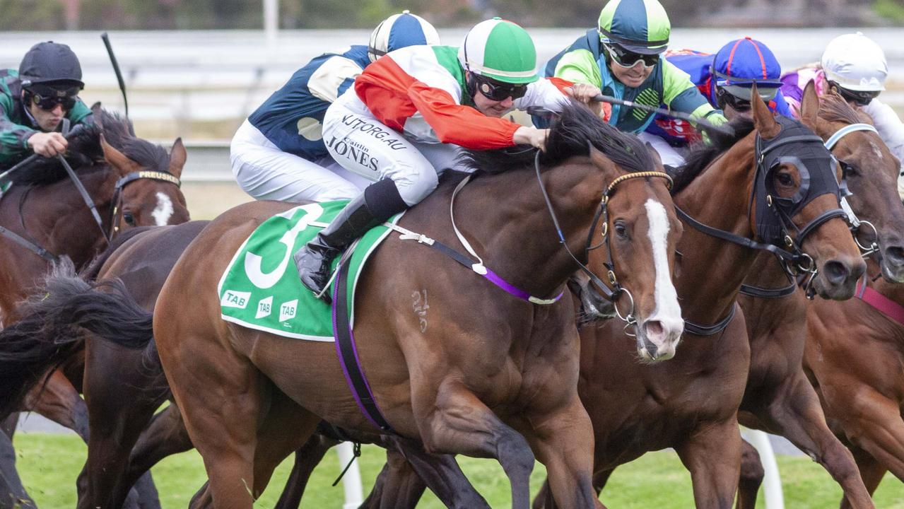 Regalo Di Gaetano runs in the Murray Bridge Gold Cup on Friday. Picture: Atkins Photography