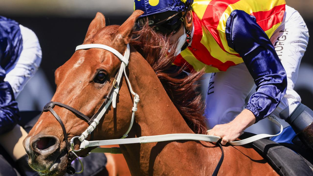 James McDonald is tipping a huge run by Nature Strip in The Everest. Picture: Getty Images
