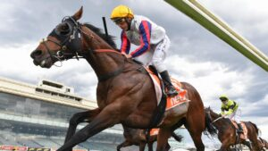 Damien Oliver riding Delphi to victory in last week's Herbert Power Stakes. Picture: Getty Images