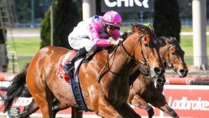 The Inferno has won nine races from 12 starts. Picture: Racing Photos via Getty Images