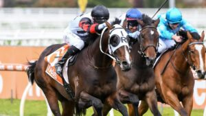The addition of blinkers worked a treat for Gunstock in the Neds Classic at Caulfield. Picture: Racing Photos via Getty Images