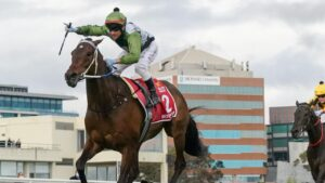 Incentivise and jockey Brett Prebble blow away the field in the Caulfield Cup. Picture: Racing Photos via Getty Images