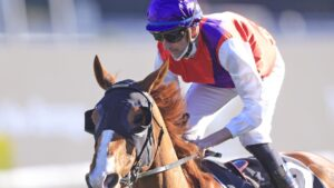 Nash Rawiller won the St Leger Stakes on Warning at Randwick on Saturday. Photo: Mark Evans–Getty Images