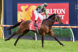 Brett Prebble salutes on Incentivise as they take the 2021 Caulfield Cup(Pat Scala/Racing Photos via Getty Images)