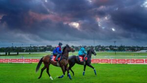 Zaaki works alongside Mo'unga at Moonee Valley on Saturday morning ahead of the Cox Plate. Picture: Jay Town—Racing Photos via Getty Images.