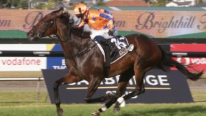 Smart New Zealand mare Entriviere is the favourite for the inaugural The Invitation at Randwick. Picture: Trish Dunell