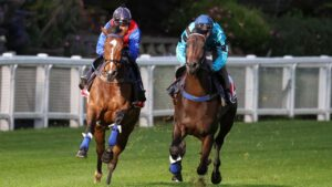 Zaaki (left) and Mo'unga goes through their paces at the Breakfast With The Best trackwork session at The Valley on Tuesday. Photo: George Sal/Getty Images.