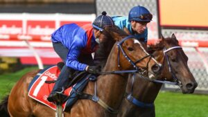 Zaaki (outside) looked good in his gallop with stablemate Mo'unga at The Valley on Tuesday morning. Picture: Getty Images