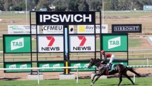 Firebox ridden by Allan Chau for trainer Michael Costa at Ipswich races. Picture: Claire Power