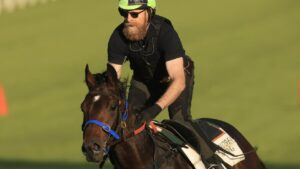 Golden Eagle contender Maximal has a gallop at Canterbury on Tuesday. Picture: Getty Images