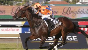 Entriviere is the favourite for the inaugural The Invitation at Randwick. Picture: Trish Dunell