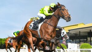 New Zealand jockey Samantha Collett hopes to start riding in Queensland on Melbourne Cup day. Picture: Trackside Photography