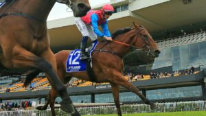 Tricky Gal runs in The Invitation at Randwick on Saturday. Picture: Getty Images