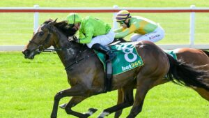 Tralee Rose shakes off Dr Drill to win the Geelong Cup. Picture: Racing Photos via Getty Images