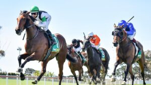 Tutukaka, ridden by Damian Lane, will progress to the Victoria Derby after winning the Geelong Classic on Wednesday. Picture: Racing Photos via Getty Images