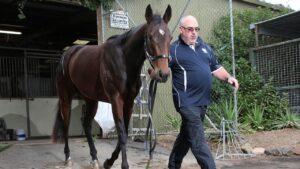 Trainer Chris Calthorpe has sent his Australasian Oaks Media Award to Sydney for The Invitation at Randwick on Saturday.