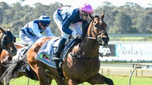 Express Pass will race for $1m in prizemoney in Friday night's Manikato Stakes. Picture: Racing Photos via Getty Images