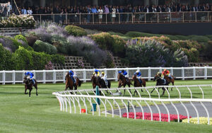 There's no better or more thrilling moment in Australian racing then when they swing for home in the Cox Plate.  Photo: Vince Caligiuri/Getty Images.