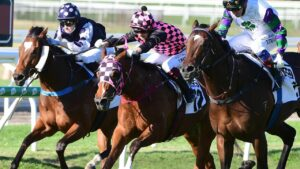 Startantes (centre) will contest the $2m The Invitation at Randwick on Saturday. Picture: Trackside Photography