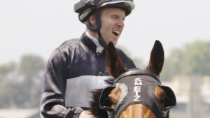 Air Marshall, a recent Highway winner for Mark Schmetzer in Sydney. Picture: Getty Images