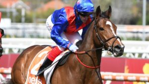 Zaaki has been heavily backed to win the Cox Plate. Picture: Getty Images