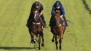Law Of Indices (left) and Reve De Vol going through their paces at Canterbury last week. Picture: Mark Evans–Getty Images.
