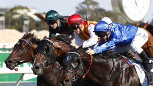 Drachenfels winning nearly four years back at Rosehill Gardens. Picture: AAP Image/Daniel Munoz