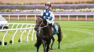 Jockey Daniel Moor . Photo: Scott Barbour/Racing Photos via Getty Images