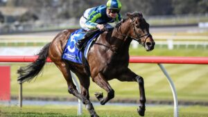 Floating Artist Is on the verge of a Melbourne Cup start after Monday's fourth acceptances for the Flemington event. Picture : Racing Photos via Getty Images.