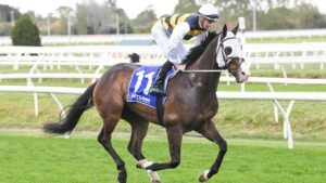 I'm Thunderstruck is favourite for Saturday's $7.5 million Golden Eagle at Rosehill Gardens. Picture: Getty Images