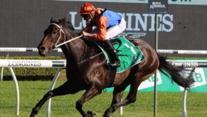 Think It Over is racing for a $1 million bonus in the Rosehill Gold Cup on Saturday. Picture: Grant Guy