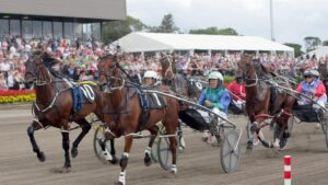 Harness racing's premier event, the Inter Dominion series, will be shown on Sky Thoroughbred Central.