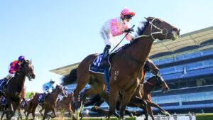 Tampering winning a Midway Handicap at Randwick in August. Picture: Picture: Getty Images