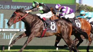 Private Eye has drawn barrier 17 in the $7.5 million Golden Eagle at Rosehill on Saturday. Picture: Grant Guy
