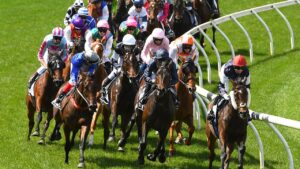 Racing Victoria wants to make the Melbourne Cup a safer race. Picture: Getty Images for the VRC