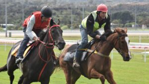 Mystic Journey (left) and Still A Star gallop in Launceston ahead of the Empire Rose Stakes. Picture: Peter Staples