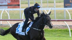 Melbourne Cup second favourite Spanish Mission during trackwork at Werribee. Picture: Getty Images