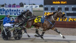 New Zealand have announced their plans to walk away from the Inter Dominion Picture: Ashlea Brennan